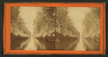 Canal in the South of Florida Connecting Indian River with Mosquito Inlet, from Robert N. Dennis collection of stereoscopic views.png