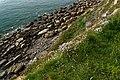 Cap Gris-Nez - Côte d'Opale - View Down & North.jpg
