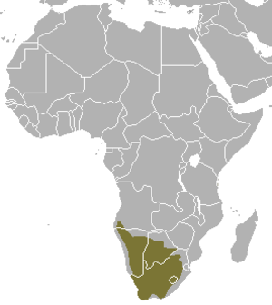 Vulpes - V. chama distribution