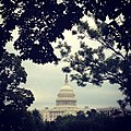 Capitol on rainy Tuesday in -DC. (9452140048).jpg