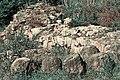 Castelo da Rocha Forte 3.jpg