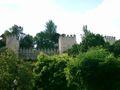 Castelo de Torres Novas (25).JPG