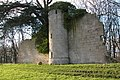 Castle folly, Croome - geograph.org.uk - 108546.jpg