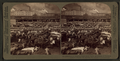 Cattle in the Great Union Stock Yards, the greatest of the live stock markets, Chicago, Ill, from Robert N. Dennis collection of stereoscopic views 3.png