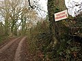 Caution pheasants - geograph.org.uk - 1619483.jpg
