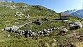 Chamonix - stone formation.jpg