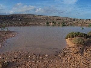 Charco grande producido por lluvias. Es zona de secano. Lo utilizan las gaviotas cuando está así de lleno.JPG