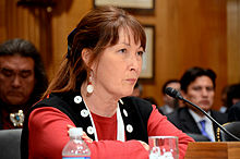 Charlene Teters - Senate Hearing on 05 May 2011.jpg