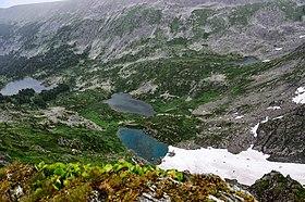 Chemalsky District, Altai Republic, Russia - panoramio (47).jpg