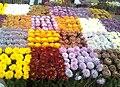Chrysanthemum show.jpg