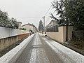 Chute de neige en cours en janvier 2021 à Saint-Maurice-de-Beynost (France).jpg