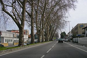 Roads in Portugal - N12 is an Oporto ring road, and, according PRN 1945, it was a National Road of 1st Class. N12 is today to be converted in a boulevard.