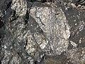 Clast-rich impact pseudotachylite (Sudbury Breccia, Paleoproterozoic, 1.85 Ga; Windy Lake Northwest roadcut, Sudbury Impact Structure, Ontario, Canada) 80 (46969151244).jpg