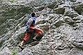 Climbing (4624695179).jpg