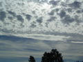 Close Altocumulus in front of Cs.JPG