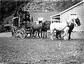 Coach and passengers, alongside the Glacier Hotel, Bealey.jpg