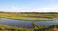 Coastal plains near Sihanoukville.jpg