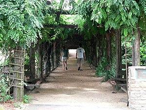 Image of Coker Arboretum: http://dbpedia.org/resource/Coker_Arboretum