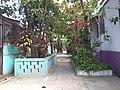 Comunidad San Antonio, San Salvador, El Salvador - panoramio (2).jpg