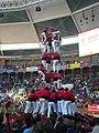 Concurs de Castells 2008 P1220429.JPG