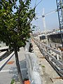 Construction east of Sherbourne Commons, 2015 09 01.JPG - panoramio.jpg