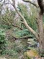 Cooden Moat near Bexhill - geograph.org.uk - 1176140.jpg