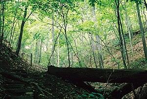 Image of Core Arboretum: http://dbpedia.org/resource/Core_Arboretum