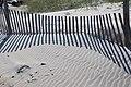 Core Banks - fence - 03.JPG