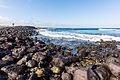 Costa de isla Santa Cruz, islas Galápagos, Ecuador, 2015-07-26, DD 50.JPG