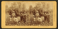 Cotton pickers, Florida, by Kilburn Brothers.png