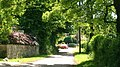 Country Lane - geograph.org.uk - 46767.jpg