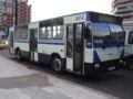 Craiova DAC bus 1.jpg
