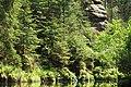 Creek through the green -3.jpg