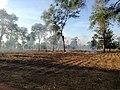 Crop Clearing in Mlesi.jpg