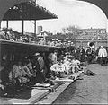CubsDugout1929WS (cropped 2).jpg