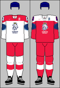 Czech Republic national ice hockey team jerseys 2019 IHWC.png