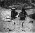 D157- charmeurs de serpents a lunettes -liv2-ch12.png