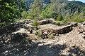 Dacian Fortress of Capalna 020.jpg