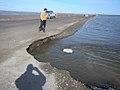 Dalton Highway flooding, May 20, 2015 (17325203724).jpg