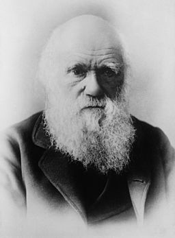 a photographic portrait of Charles Darwin's head and shoulders as old man with an impressive long white beard