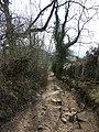 Deeply rutted lane - geograph.org.uk - 1803093.jpg
