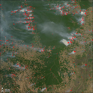 causes of deforestation in myanmar