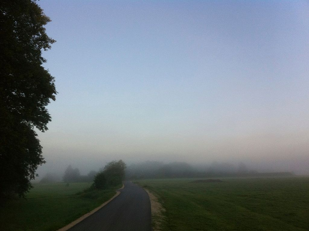 1024px-Dense_morning_fog_%286051817561%29