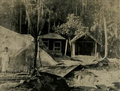 Destroyed Namashudra house in Noakhali 1946.png