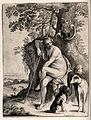 Diana (Artemis). Engraving by P. Pontius and W. Hollar after Wellcome V0035795.jpg