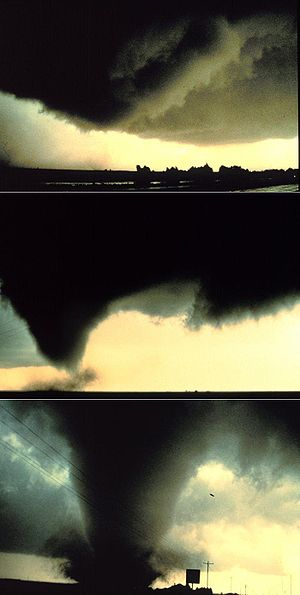 Tornadogenesis - A sequence of images showing the birth of a supercellular tornado. First, the rotating cloud base lowers. This lowering becomes a funnel, which continues descending while winds build near the surface, kicking up dust and other debris. Finally, the visible funnel extends to the ground, and the tornado begins causing major damage.