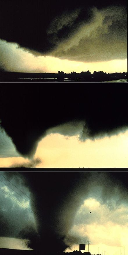 A sequence of images showing the birth of a tornado. First, the rotating cloud base lowers. This lowering becomes a funnel, which continues descending while winds build near the surface, kicking up dust and debris and causing damage. As the pressure continues to drop, the visible funnel extends to the ground. This tornado, near Dimmitt, Texas, was one of the best-observed violent tornadoes in history. Dimmit Sequence.jpg
