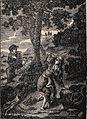 Don Quixote Illustration I.jpg