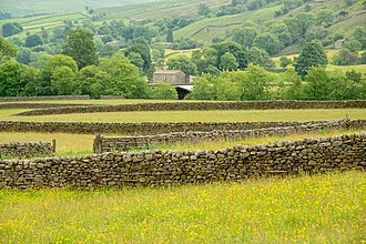 Dry stone - Dry stone walls in the Yorkshire Dales, England