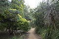 Dubbo NSW 2830, Australia - panoramio (181).jpg